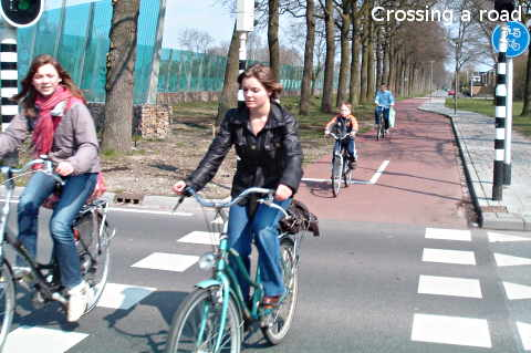 Crossing a road by bicycle